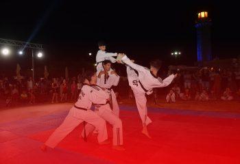 ofeli-taekwondo-as-ekrixi